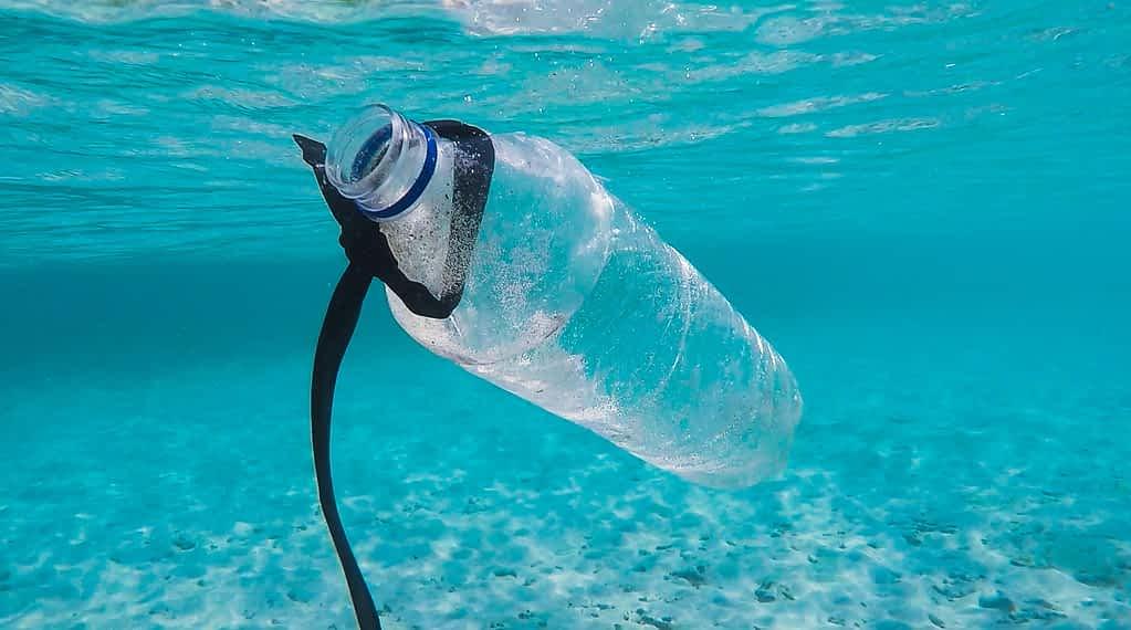 waterbottle ocean recycle