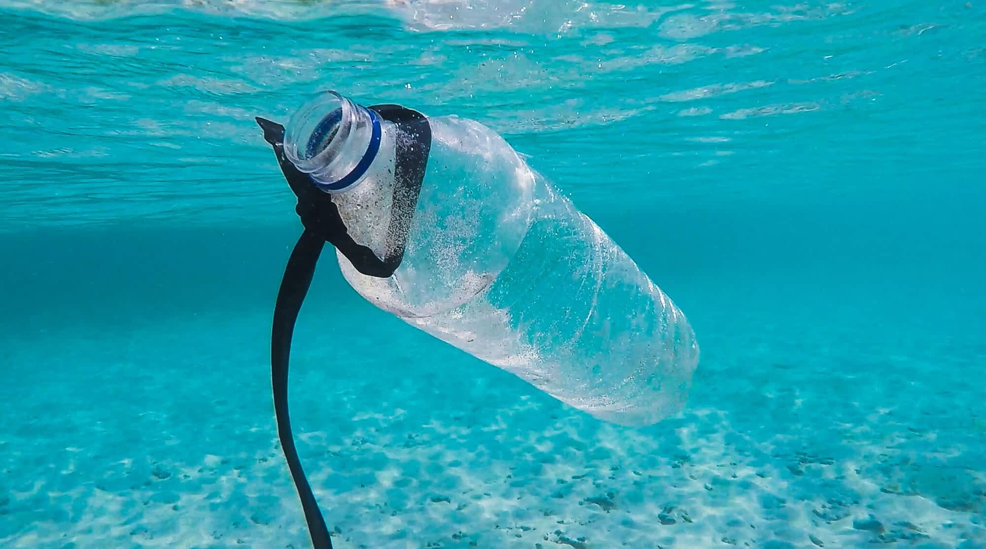What Happens When You Throw Away Single-use Plastics?